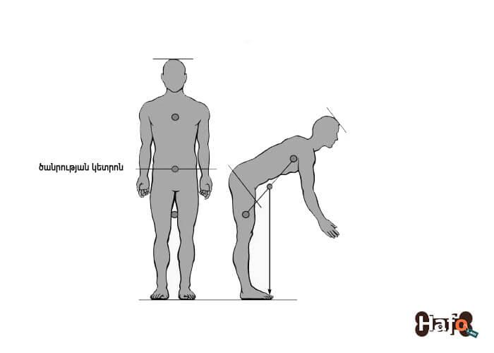 Մարդու մարմնի ծանրության կենտրոնը