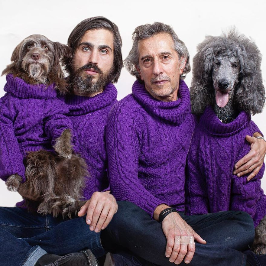 Շների և տերերի նմանությունը